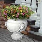 Вазоны и кашпо для цветов