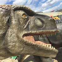 Купить динозавра