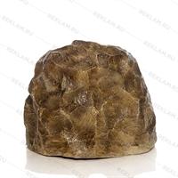 Валун камень