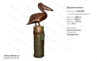 оформление парков бурый пеликан US07582