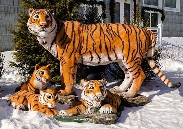 Тигры от Reklam ru 🌟 Год тигра 2022