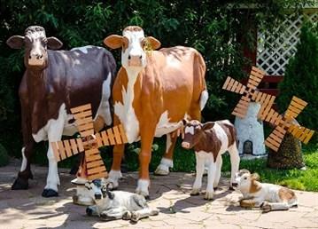 ШОК! КОРОВА БЕЗ РОГОВ 🌟 Корова племенная