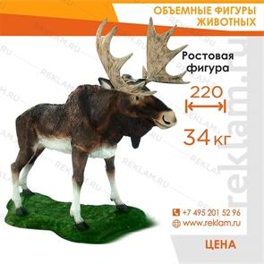Ростовая фигура Лось, стеклопластик, 175 см.