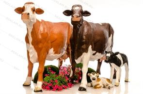 Комплект фигур коровы с телятами