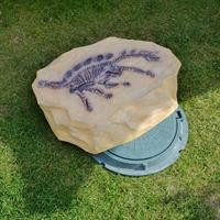 камень со скелетом динозавра