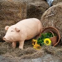 реклама фигуры свиньи