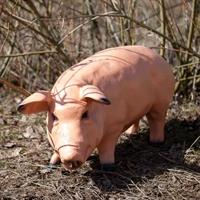 рекламная фигура свинка