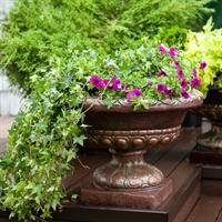 бронзовый цветочный вазон