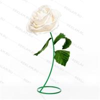 декоративный цветок розы