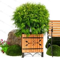 деревянная кадка для цветов с оковкой