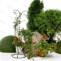 вертикальное озеленение цена