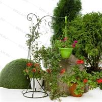вертикальное озеленение в москве