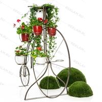 вертикальное озеленение купить