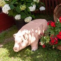 ландшафтные фигуры свинок