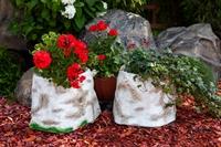 цветочное кашпо купить
