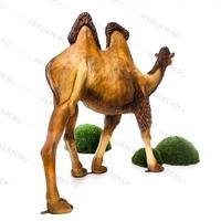 ростовая фигура верблюда купить