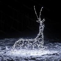 купить оленя светящегося