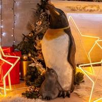 Новогодняя фигура Пингвин с пингвиненком