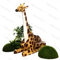 лавка жираф