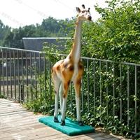 Оформление зоопарка