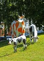 Макеты коров