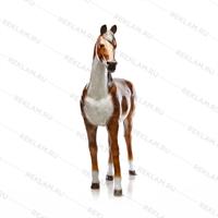 Ростовая фигура Лошадь Бурая - фото 7361