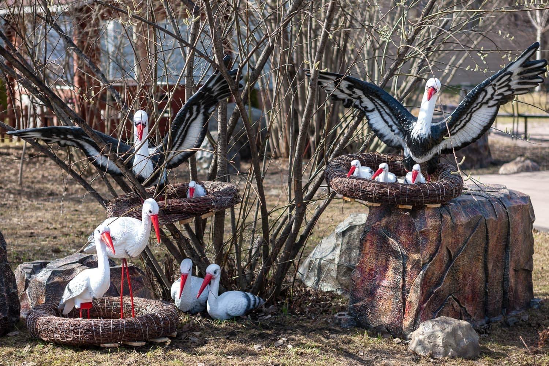 Фигуры птиц - идеальное оформление дачных участков